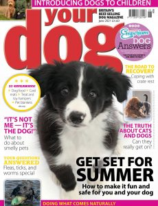 Your Dog – June 2021