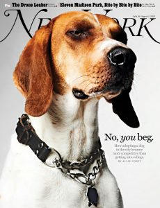 New York Magazine – July 19, 2021