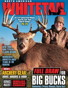 North American Whitetail – August 2021