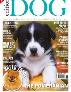 Edition Dog – Issue 36 – September 2021
